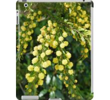 Spring is in the Air ! iPad Case/Skin