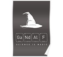 Gandalf's Magical Science Poster