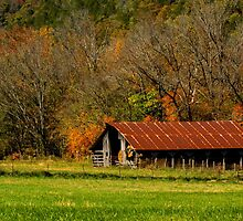 The Barn in Boxley Valley by darlayng52