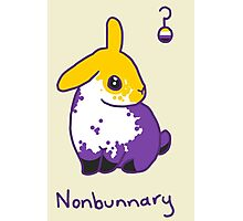 Original Nonbunnary Photographic Print
