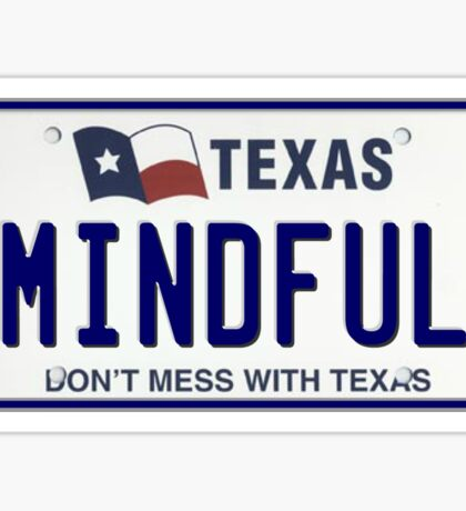MINDFUL TX Texas Pride License Plate Sticker