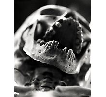 I Want Your Skulls Photographic Print