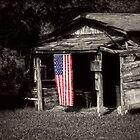 This Old Shed by LarryB007