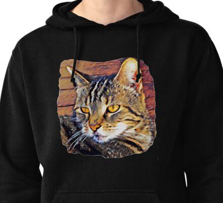 Cat Painting Pullover Hoodie