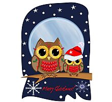 Christmas Owls in a snowy full moon night & text Photographic Print