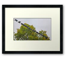 Birds on the Wire Framed Print