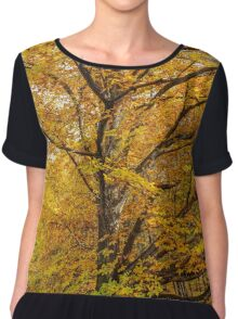 Deciduous forest in the autumn Chiffon Top