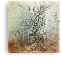 Winter in My Heart Impression métallique
