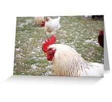 Ruling The Roost Greeting Card