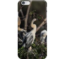 "Family ""Tree"" iPhone Case/Skin"
