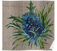 Blue Thistle Oil Painting Poster