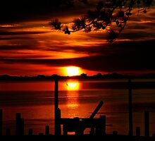 Sunrise at Bay Avenue Marina by FedericoArts