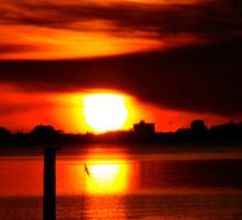 Sunrise at Bay Avenue Marina Sticker