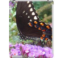 Spice Bush Swallowtail Butterfly iPad Case/Skin