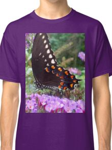 Spice Bush Swallowtail Butterfly Classic T-Shirt