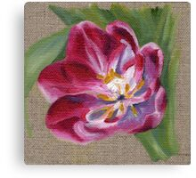Pink Tulip Oil Painting Canvas Print