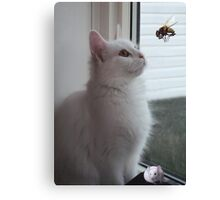 WONDERING..NOW HOW DID HE GET IN HERE? CAT & UNWANTED GUESTS > PICTURE AND OR CARD Canvas Print