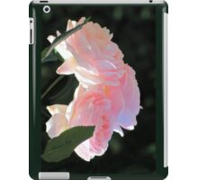 Backlit Roses ~ Sweetly Romantic iPad Case/Skin