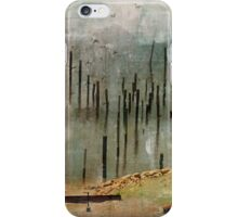 Into the Mist iPhone Case/Skin