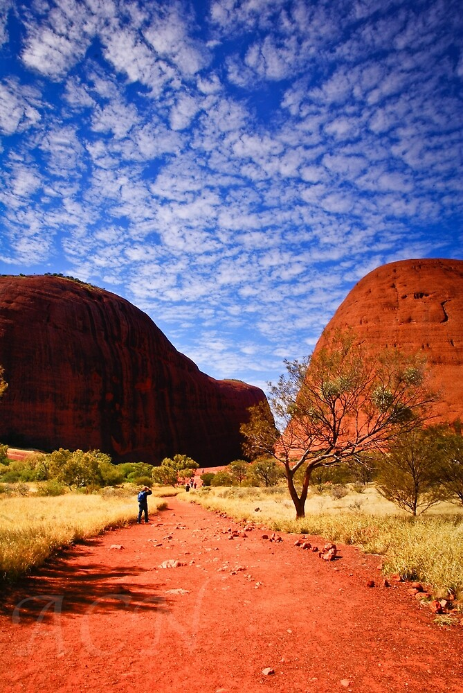 Clouds over The Olgas by anorth7