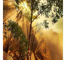 Cliff face in mist, Mount Buffalo Photographic Print