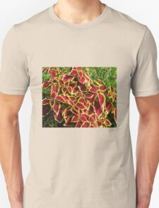 Blaze of Glory - Red Coleus in Autumn T-Shirt