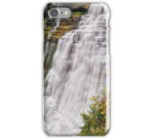 Brandywine Falls iPhone Case/Skin