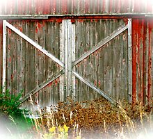 Red Barn Doors by FedericoArts
