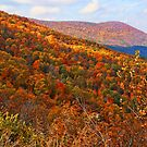 Fall Blanket by JohnDSmith