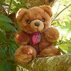 Red Tie Teddy Bear by Vivian Eagleson