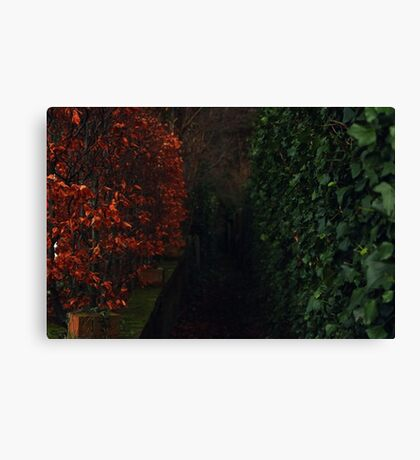 Battle Of The Seasons Canvas Print