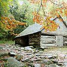 Bud Ogle's Barn by Asoka