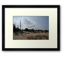 Sand dunes with a tree Framed Print