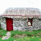Canny's Cottage, Donegal, Ireland by Shulie1