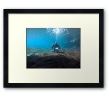Scuba diving#25 Framed Print