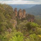The Three Sisters With Fernery by Michael Matthews