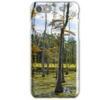 Sam Houston Jones State Park iPhone Case/Skin