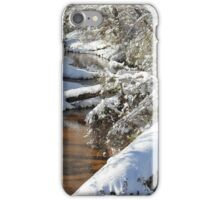 Winters Creek iPhone Case/Skin