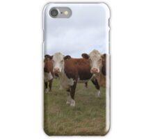 Cows In A Field iPhone Case/Skin