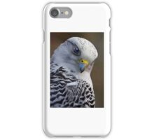 Grey Falcon iPhone Case/Skin