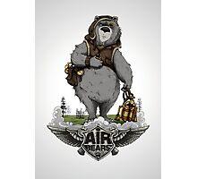 Air Bears  Photographic Print