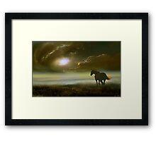 Equine Life Framed Print
