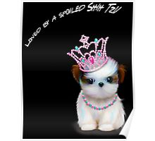 Loved By A Spoiled Shih Tzu Poster