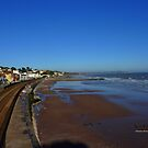 Coastal Railway, Dawlish by Charmiene Maxwell-Batten