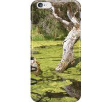 Wetland, Denmark WA iPhone Case/Skin
