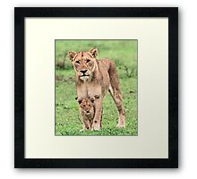 You are safe with me little one! Framed Print