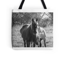 Mare and her Colt. Tote Bag