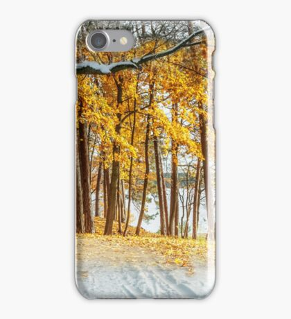 Back in the fall iPhone Case/Skin