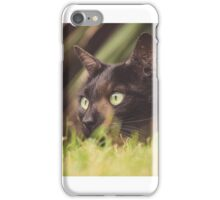 Cat ready to pounce iPhone Case/Skin