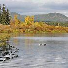 Autumn Landscape by AnnDixon